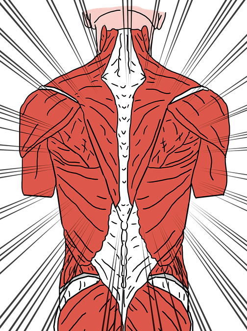 How Tight Muscles Result in Back Pain